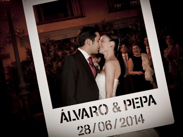 La boda de Álvaro y Pepa en Segovia, Segovia 36
