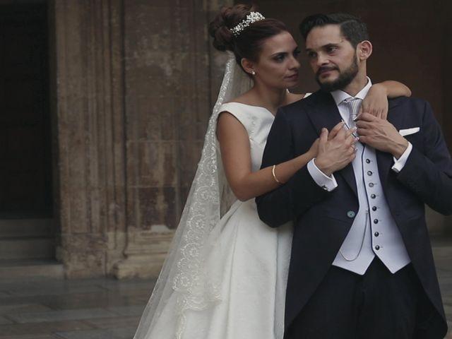 La boda de Fº Javier y Sara en Granada, Granada 33