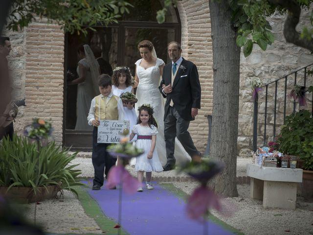 La boda de César y Arancha en Chinchon, Madrid 8