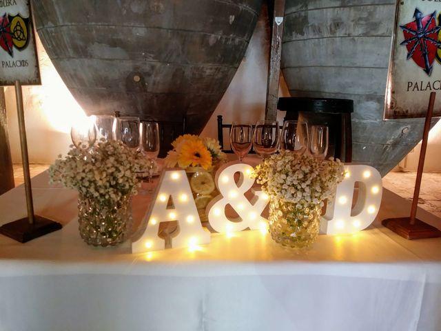 La boda de David  y Amparo  en Valdepeñas, Ciudad Real 9