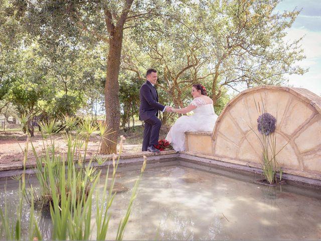 La boda de Alex y Tamara en Laguardia, Álava 19