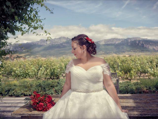 La boda de Alex y Tamara en Laguardia, Álava 23