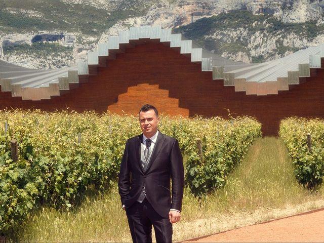 La boda de Alex y Tamara en Laguardia, Álava 30