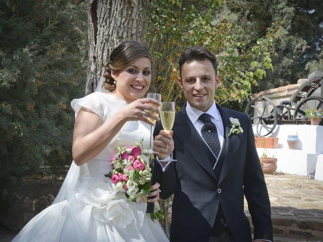 La boda de Raul y Mari Cruz en Argamasilla De Calatrava, Ciudad Real 70