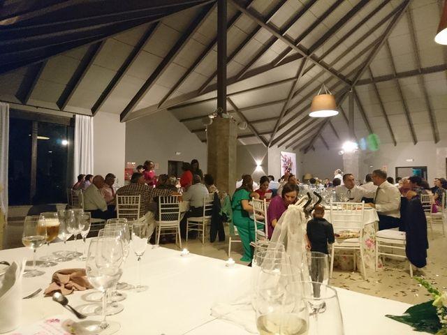 La boda de Miguel y Eli  en Olivares, Granada 6