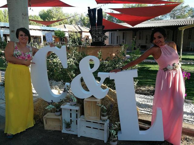 La boda de Luis Fernando y Carolina en Los Yebenes, Toledo 6