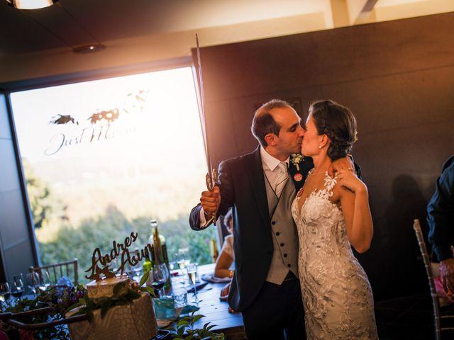 La boda de Andrés y Asun en El Rourell, Tarragona 235