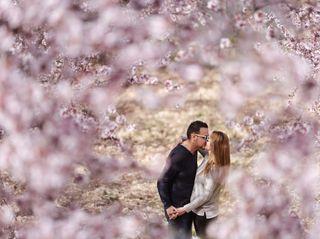 La boda de Vane y Javi 1