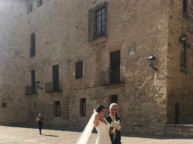 La boda de Ivan y Raquel en Sant Cugat Del Valles, Barcelona 2