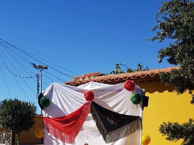 La boda de Diego y Rocío en Salvaleon, Badajoz 6