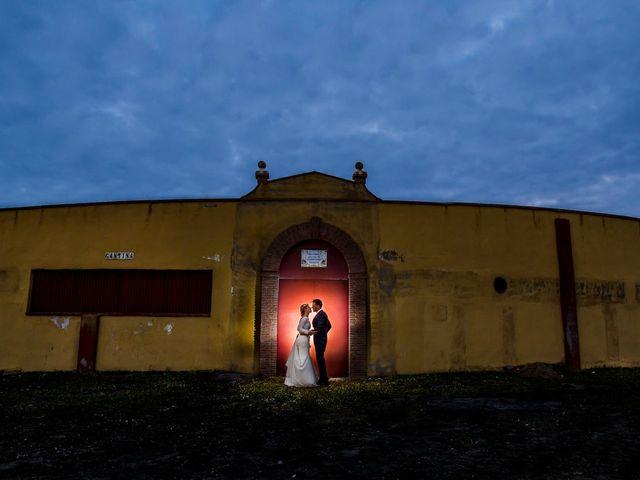 La boda de Victoria y Fran en Alamillo, Ciudad Real 2