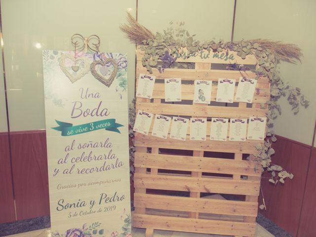 La boda de Pedro y Sonia en Almansa, Albacete 21