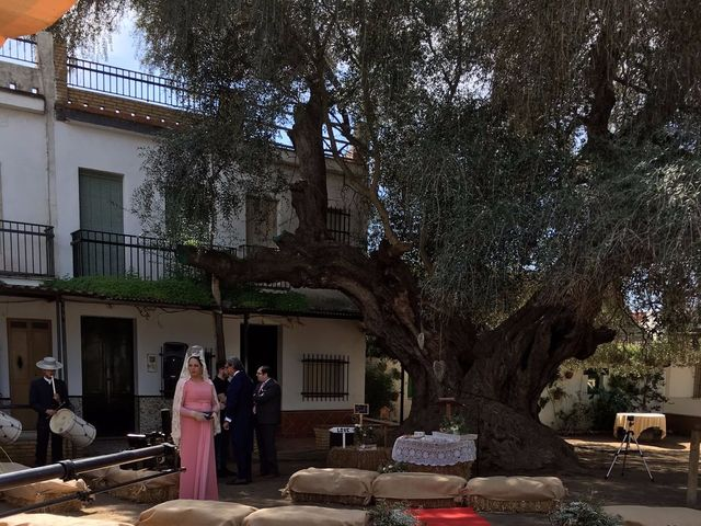 La boda de Paco y Mº Jose en El Rocio, Huelva 4