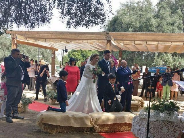 La boda de Paco y Mº Jose en El Rocio, Huelva 1
