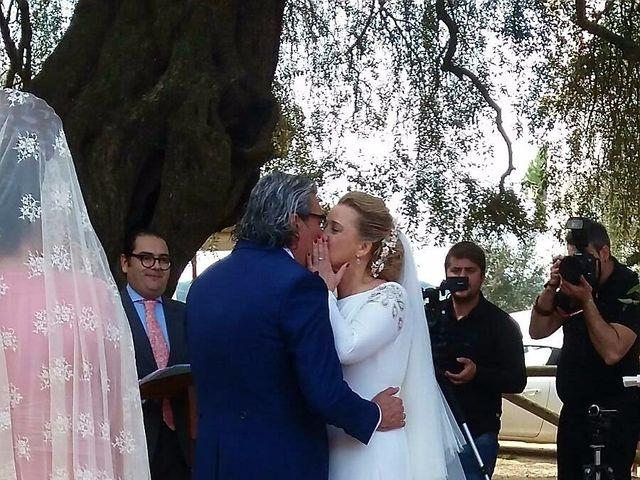 La boda de Paco y Mº Jose en El Rocio, Huelva 5