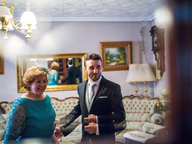 La boda de Ramón y Elena en La Villa De Don Fadrique, Toledo 8