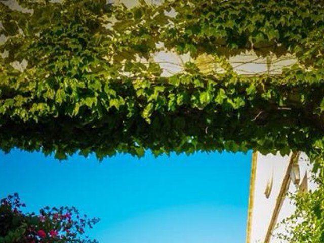 La boda de Carlos y Alba  en Alacant/alicante, Alicante 12