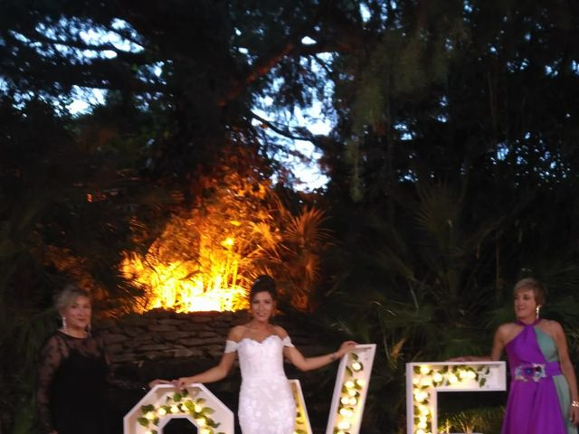 La boda de Javier  y Estela en Guadarrama, Madrid 14