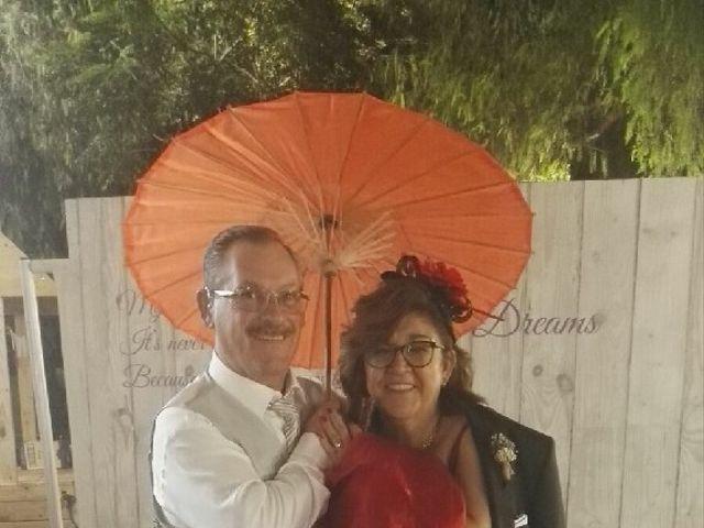 La boda de David  y Lydia  en Aspe, Alicante 7