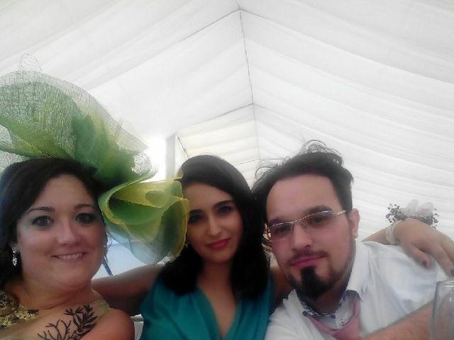 La boda de David  y Lydia  en Aspe, Alicante 12