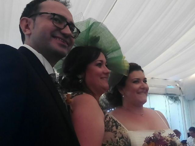La boda de David  y Lydia  en Aspe, Alicante 13