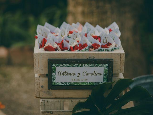 La boda de Antonio y Carolina en Elx/elche, Alicante 47