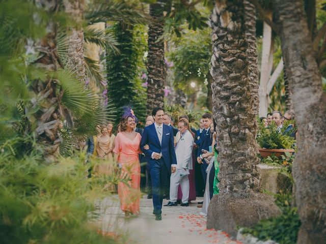 La boda de Antonio y Carolina en Elx/elche, Alicante 50
