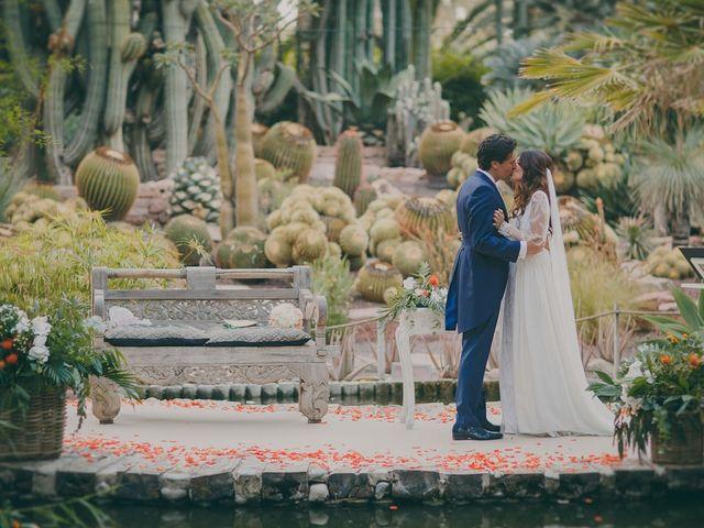 La boda de Antonio y Carolina en Elx/elche, Alicante 71