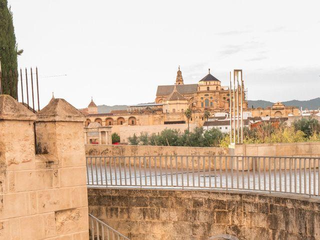 La boda de Pedro y Desirée en Córdoba, Córdoba 10