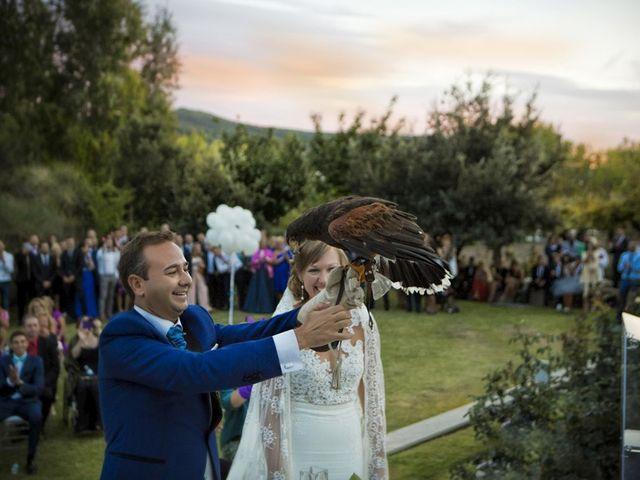 La boda de Toni y Yolanda en Aielo De Malferit, Valencia 9
