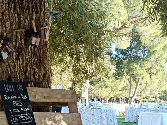 La boda de Jorge y Cristina en Elx/elche, Alicante 2