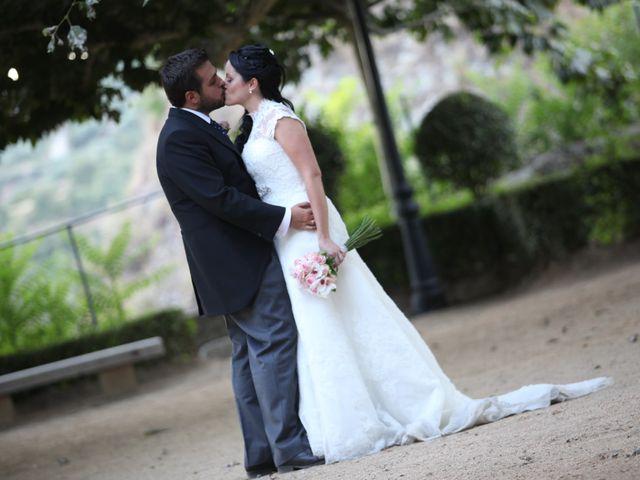 La boda de Javier  y Rocio  en Villarejo Del Valle, Ávila 30