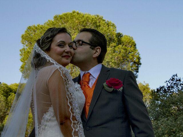 La boda de David y Maria en Almorox, Toledo 17