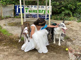 La boda de Carla y Hector  1