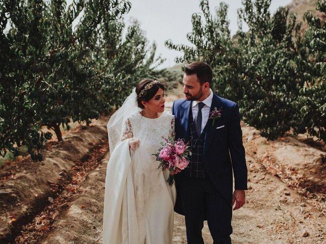 La boda de Felix y Elena en Medellin, Badajoz 41