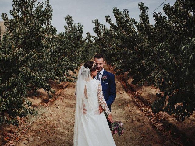 La boda de Felix y Elena en Medellin, Badajoz 42