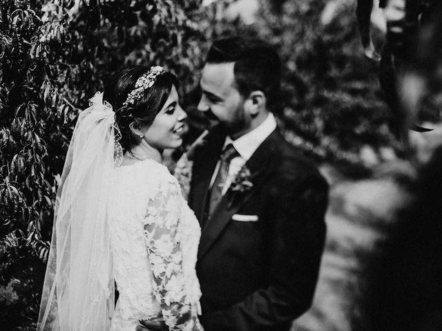 La boda de Felix y Elena en Medellin, Badajoz 44