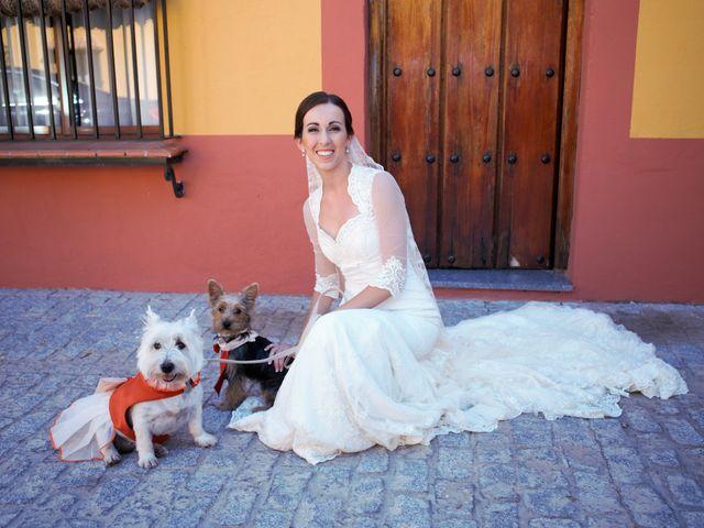 La boda de Miguel Ángel y Regina en Sevilla, Sevilla 16