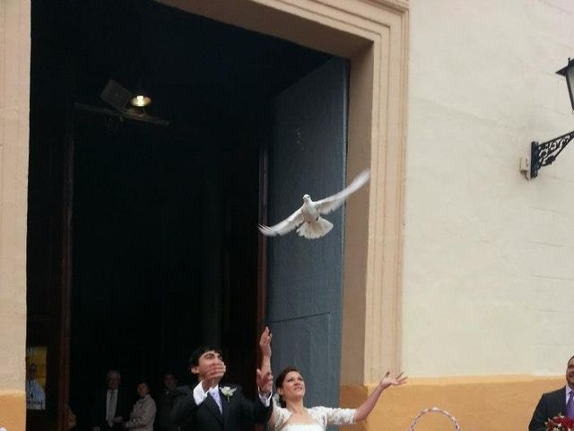 La boda de Manuel y Carmen en Alcácer, Valencia 4