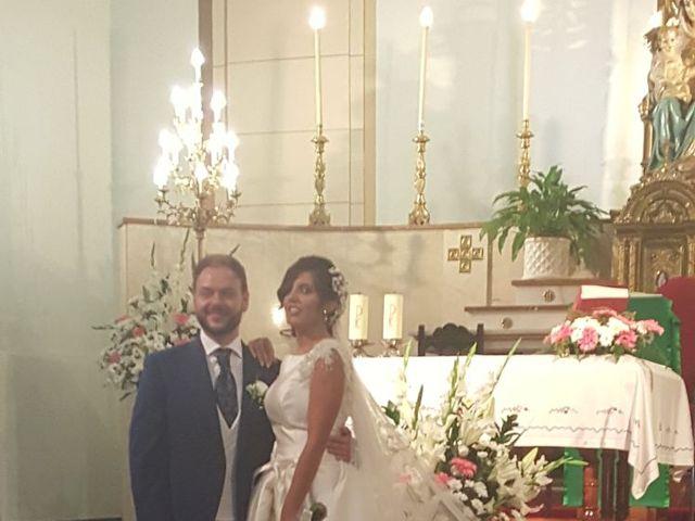 La boda de Pedro y Alicia en Jaén, Jaén 4