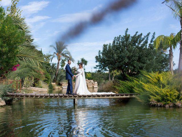 La boda de Alex y Sandra en Alacant/alicante, Alicante 30