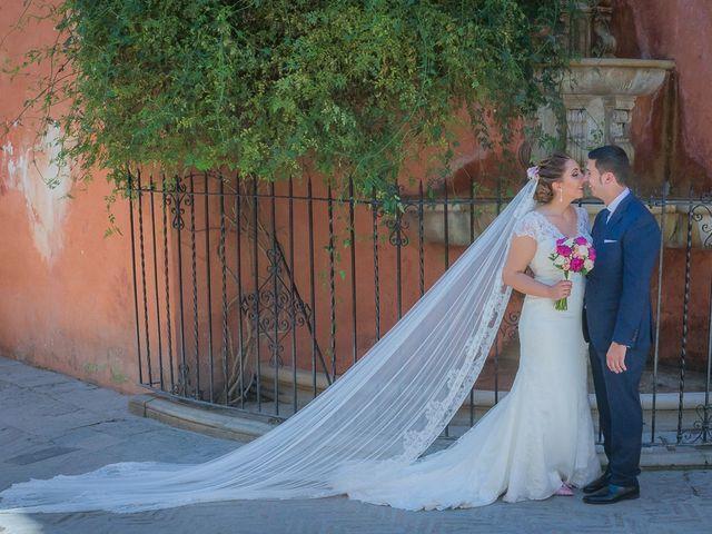 La boda de Iván y Ana María en Villanueva Del Ariscal, Sevilla 46