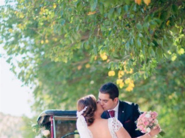 La boda de Sergio  y Jessica  en Alcala La Real, Jaén 5