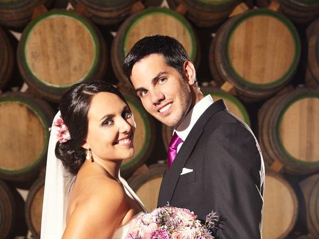 La boda de Daniel y Elisabeth en Zafra, Badajoz 17