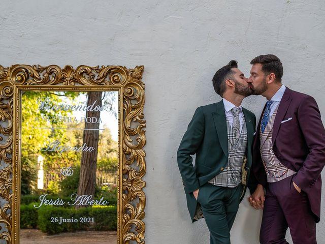 La boda de Jesús Alberto y Alejandro en Granada, Granada 61