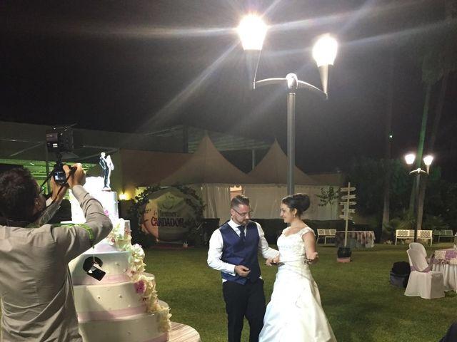 La boda de Daniel y Beatriz en Córdoba, Córdoba 13