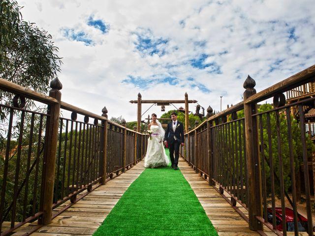 La boda de Luis Miguel y Veronica en Villarrubia De Los Ojos, Ciudad Real 21
