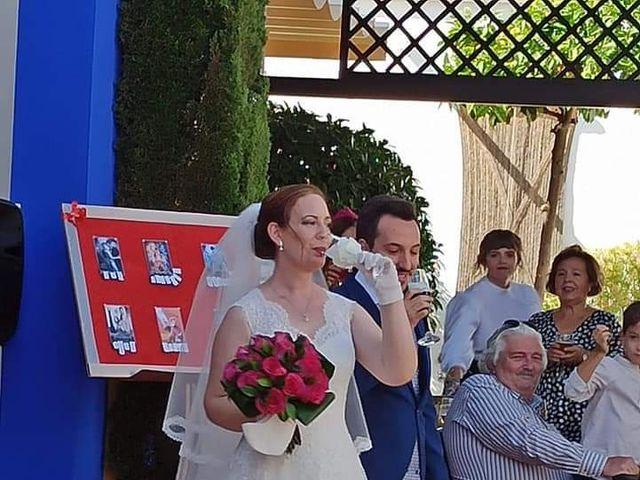 La boda de Concepción y Javier  en Córdoba, Córdoba 13