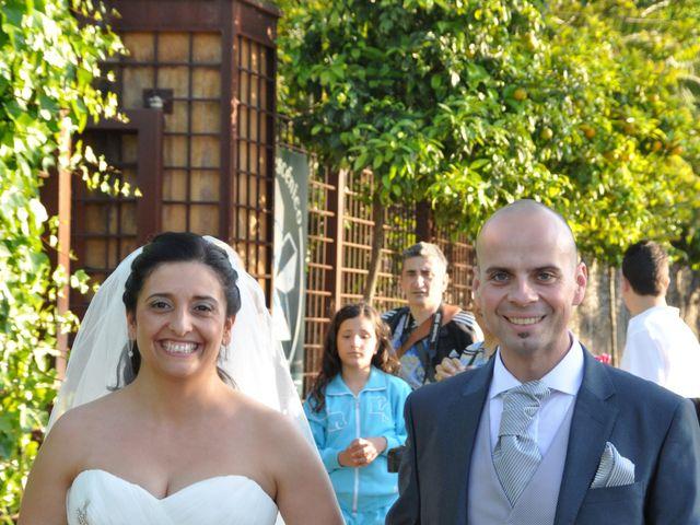 La boda de Tere y David en Jerez De La Frontera, Cádiz 16