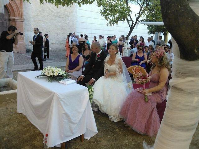 La boda de Antonio y Diana en Santiponce, Sevilla 2